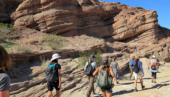 Hikers on beautiful trail